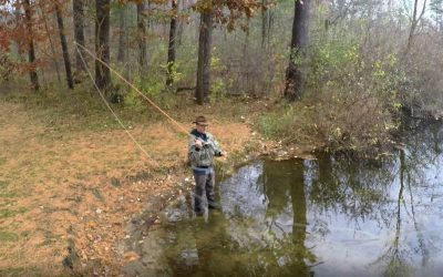 Mastering the Roll Cast with a Fly Rod (Illustrations & Video)