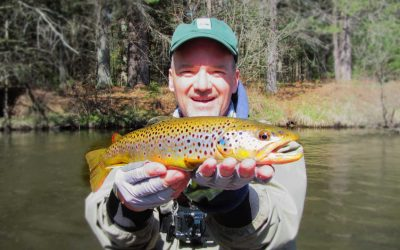 The Magic of Wet Flies (Fly Fishing Guide)