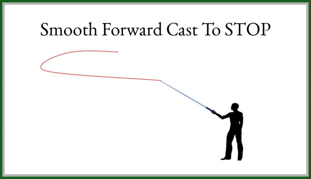 Step 6 Cast Forward to Stop