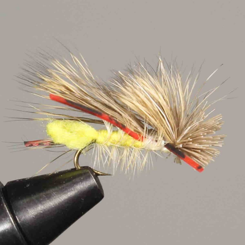 Stimulator Fly for Rainbow