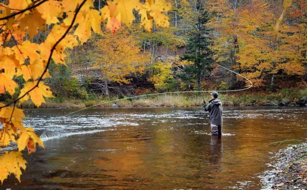 Learn More About Fly Fishing Reels