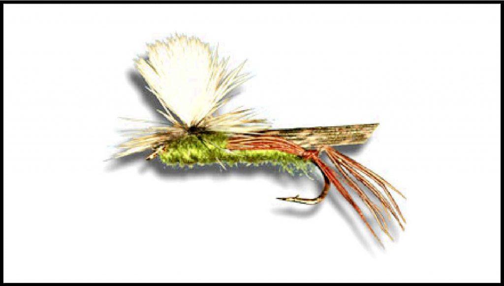 Parachute hopper size 6