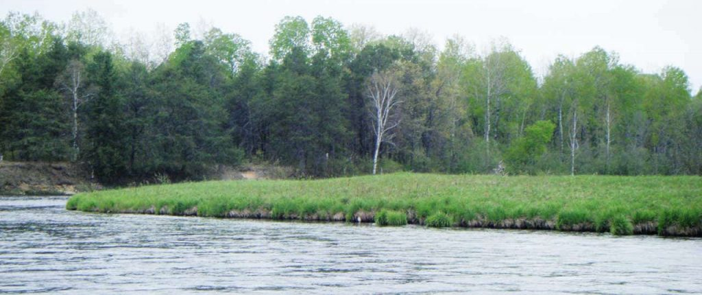 Where to find hoppers fly fishing